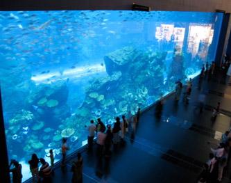 Аквариум в Дубае дал трещину