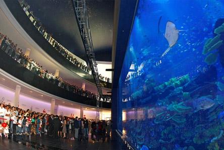 Аквариум в Дубаи