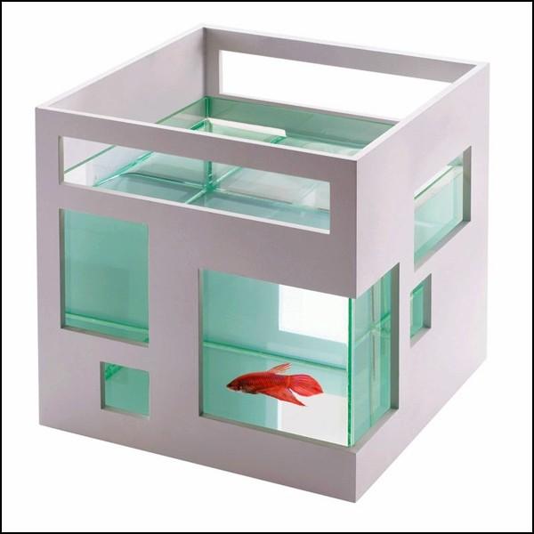 Многоквартирный аквариум