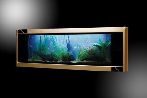 Самый дорогой в мире аквариум