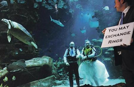 Свадьба в Лондонском аквариуме