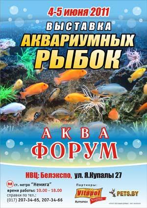 Выставка рыб в Минске